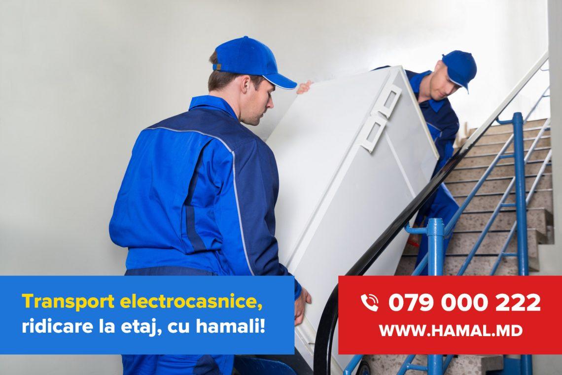 Transport electronice și electrocasnice