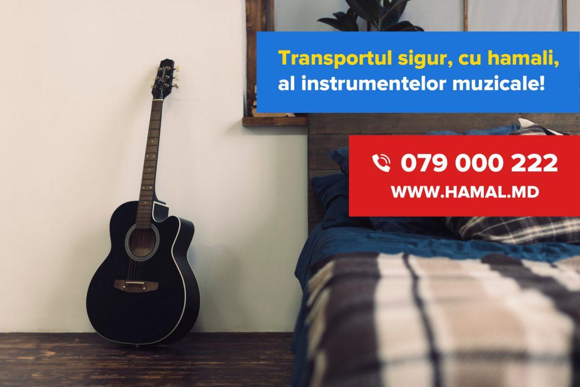 Transport instrumente muzicale